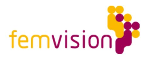 Logo femvision
